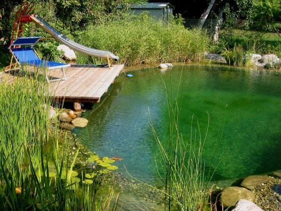 Runder Badeteich mit klassischem Steg Schwimmbereich ca. 5x4 m Naturnah gestalteter Pflanzbereich rund um die Schwimmzone