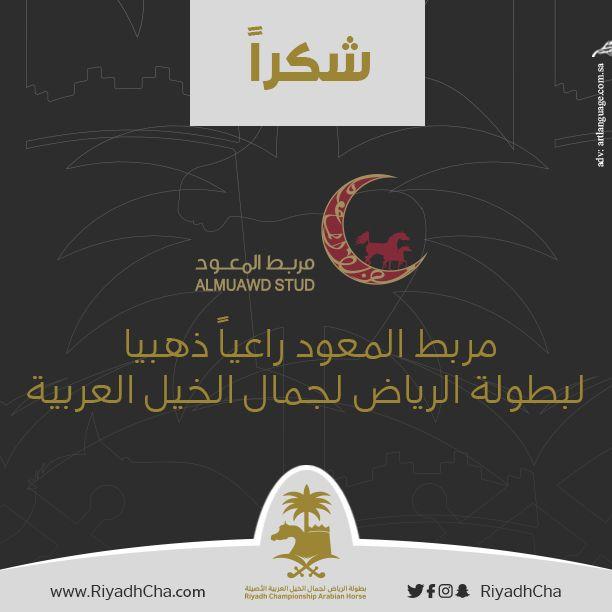 بطولة الرياض المعود راعيا ذهبيا بطولة الرياض للخيل Arabian Horse Poster Movie Posters