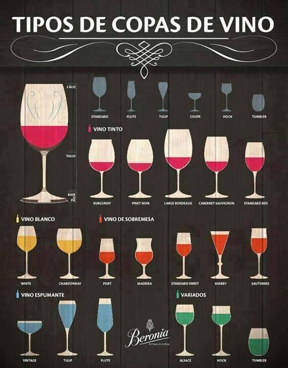 "Cocina y Vino en Twitter: ""Tipos de copas de vino  #Vino #Wine #Infografía #Kitchen #Cocina https://t.co/6BRfsyzpv0"""