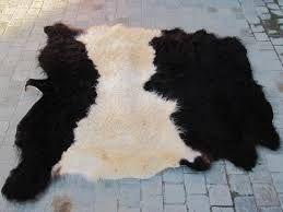 Afbeeldingsresultaat voor koeienhuid