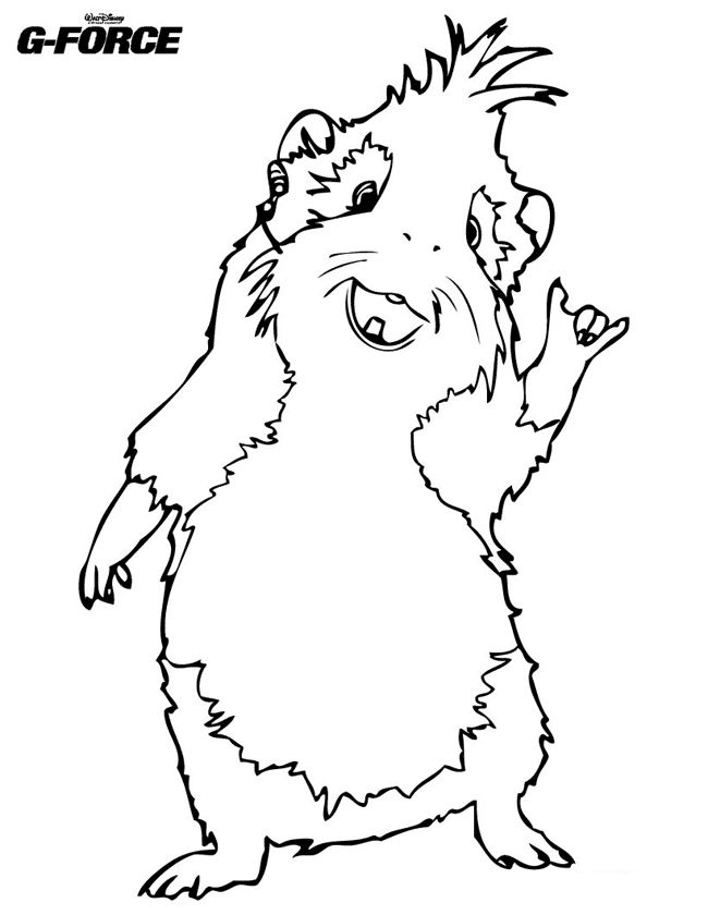 Free Guinea Pig Coloring Page Guinea Pig Pinterest Coloring