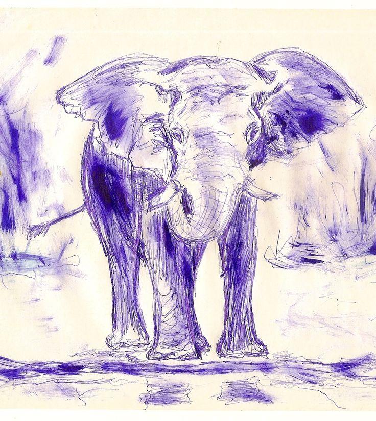 I love to draw animals
