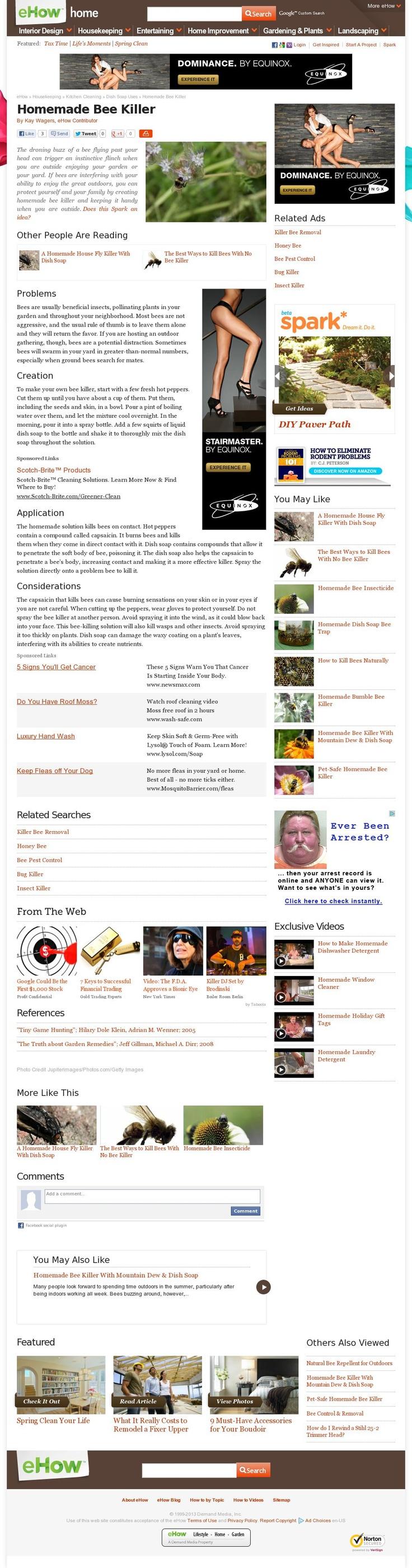The website 'http://www.ehow.com/info_8161024_homemade-bee-killer.html' courtesy of @Pinstamatic (http://pinstamatic.com)