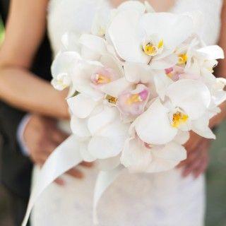Die 25+ Besten Ideen Zu Brautstrauß Mit Orchideen Auf Pinterest ... Gestaltungsideen Durch Orchiden