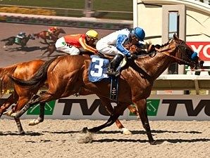 Capital Account(2007)(Colt) Closing Argument- Accountess By Private Account. Outcross In First 5 Generations. 14 Starts 5 Wins 4 Seconds 3 Thirds. $455,080. Won 7F AWT Pat O'Brien S(G2), 2nd 6F Santa Anita Sprint Champshp S(G1), 7F San Carlos H(G2), 3rd 6F AWT Bing Crosby H(G1), 6F AWT Vernon O Underwood S(G3).