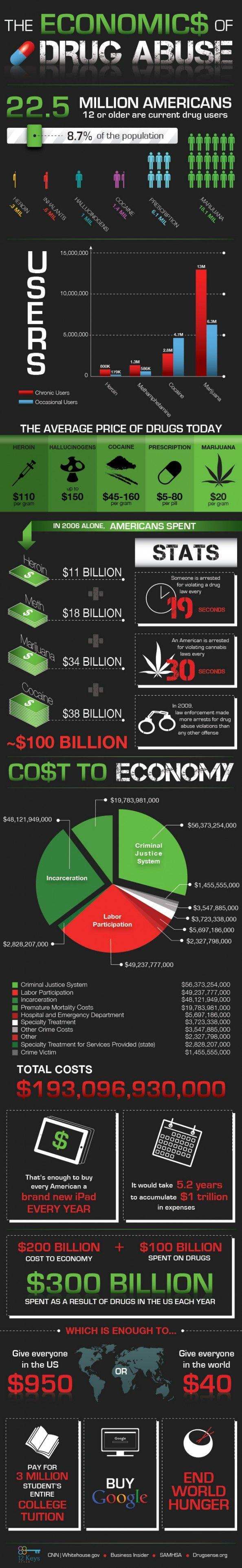 The Economics of Drug Abuse Infographic