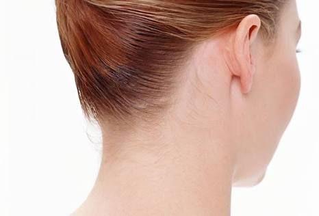 「耳」の画像検索結果