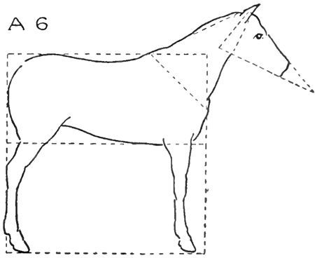How To Draw Horses With Easy Step By Step Drawing Lessons How To Draw Step By Step Drawing Tutorials Step By Step Drawing Horse Drawings Drawing Lessons