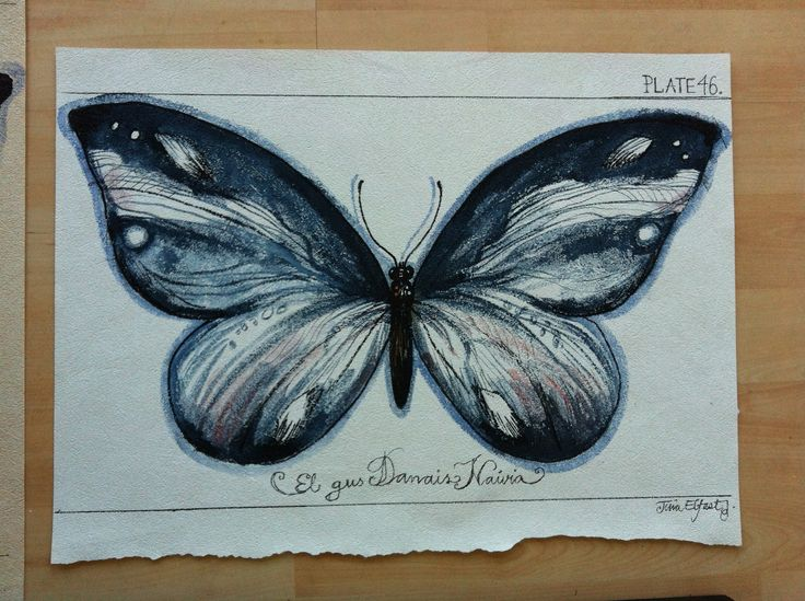 Butterfly mixed media original by Tina Elfast