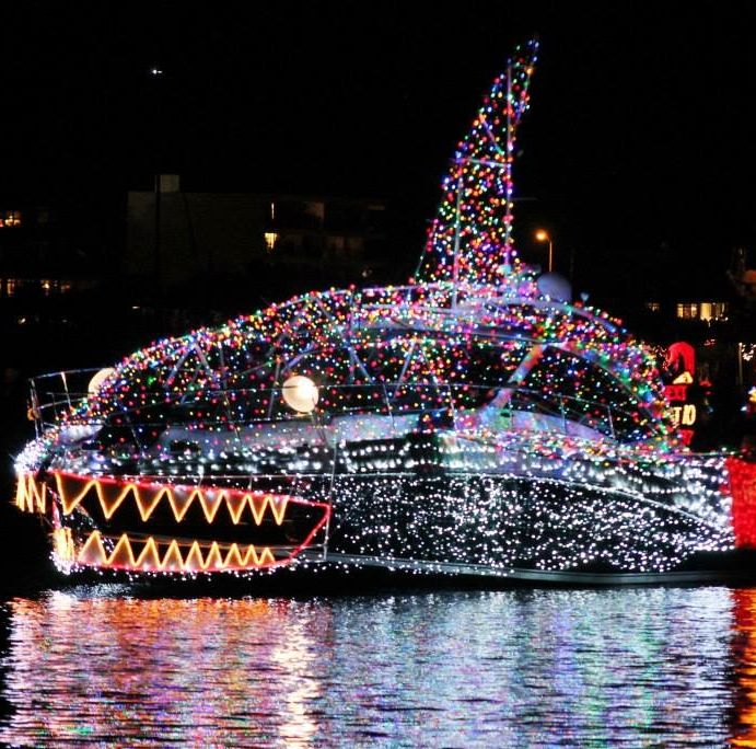 Christmas Lights Shark Tank: 193 Best Images About Christmas By The Beach On Pinterest
