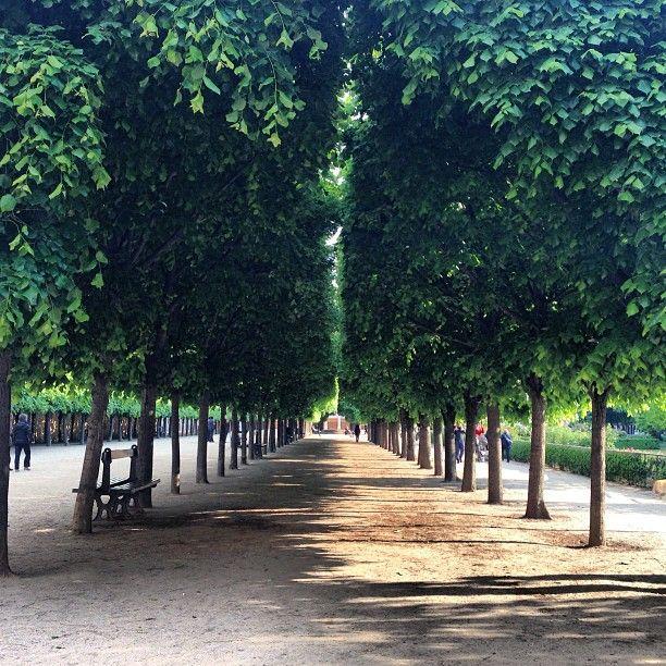 Jardin du Palais Royal à Paris - Concours d'élégance