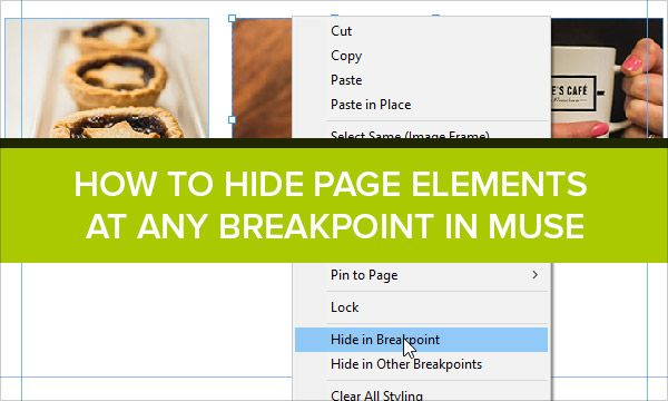 how to put video in adobe muse