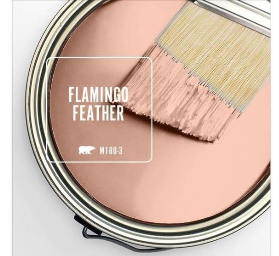 Behr's Flamingo Feather