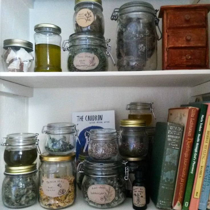 Place where my herbs & salves and oils for the #wildwoodgatherer hide in. .  .  .  #wildmedicine #treemagic #herbalism #plantpeople #plantmagic  #foraging #thesimplelife #thecauldronzine #herbalmedicine