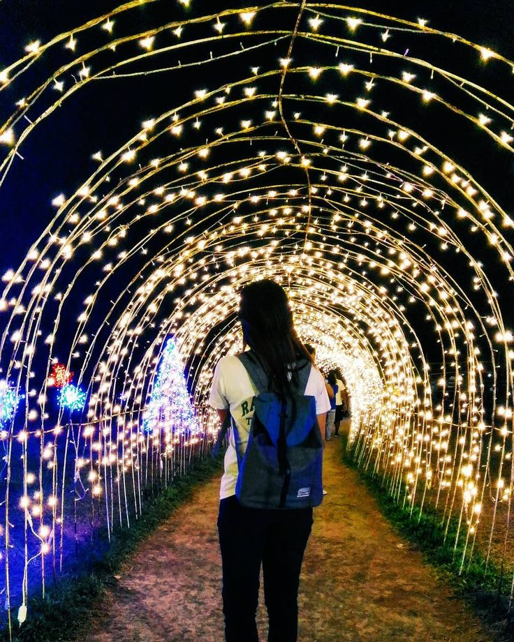 Christmas Light Show At Nuvali Magical Field Of Lights // Philippines IG  Via @immichelle24