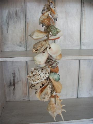 NEED TO DO THIS WITH SOME OF MY MANY SHELLS.
