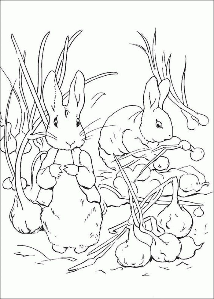 Velveteen Rabbit Coloring Pages Animal Coloring Pages Bee Coloring Pages Spider Coloring Page