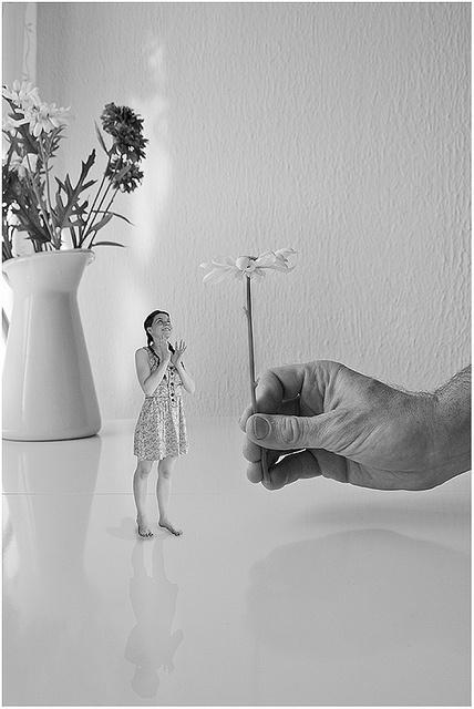 El fabuloso destino de la chica menguante by jgs76, via Flickr