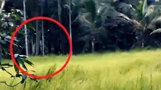 Scary Videos | Scary Ghost Sighting Caught On Camera During Day Time | Ghost Sightings