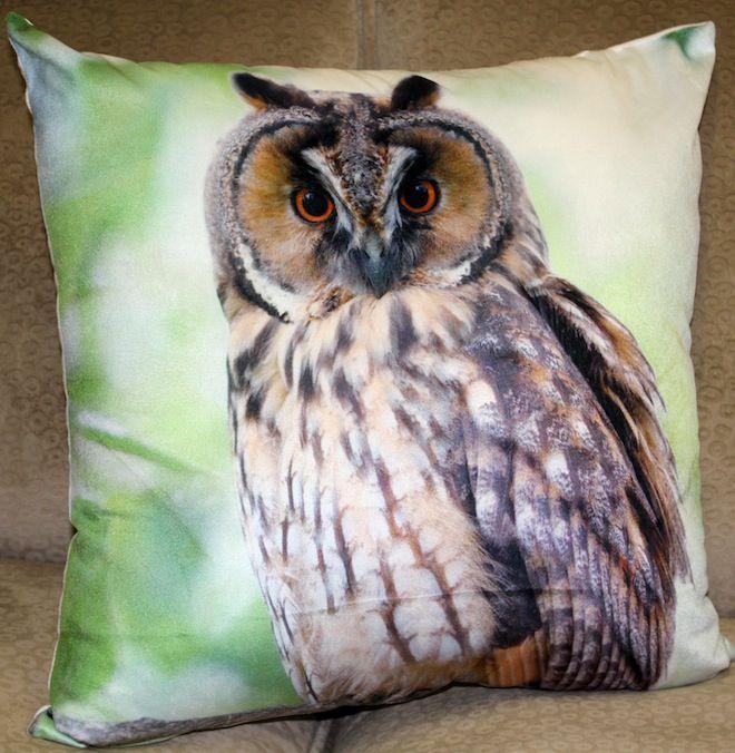 Staring owl cushion in green #Cushion | #Owl | #Sale | #GreenCushion | #GreenandBrown | #PhilBee | #Decor | #Melbourne | #Interiors | #InteriorDecorator | #Cushions | #OwlCushion