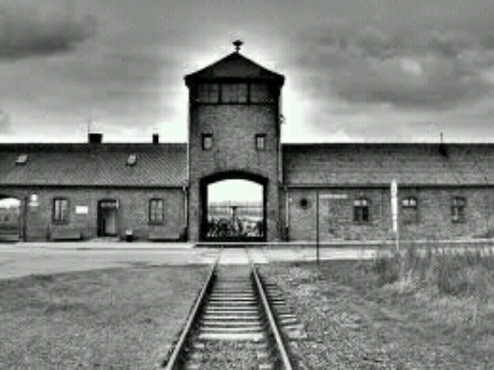 thesis on holocaust survivors