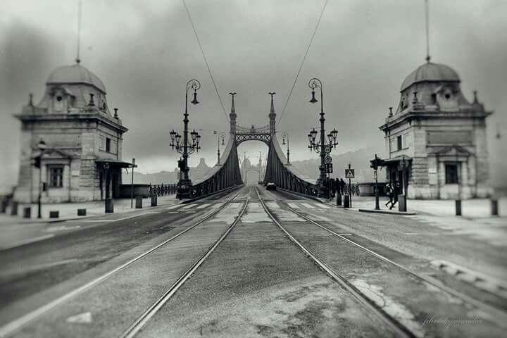 1920. Ferenc József (Szabadság) híd.