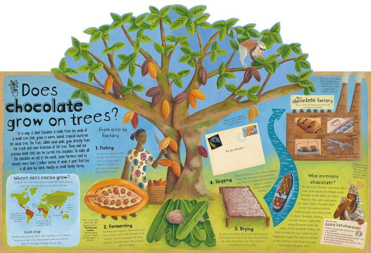 Pop up image from How we Make Stuff. Written by Christiane Dorion and illustrated by Beverley Young.