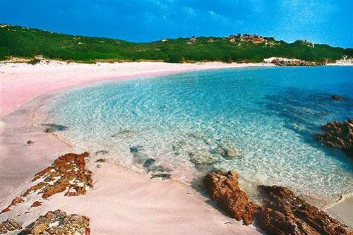 The amazing Pink Beach | Sardegna, Italy    by thelexlab + 27 others