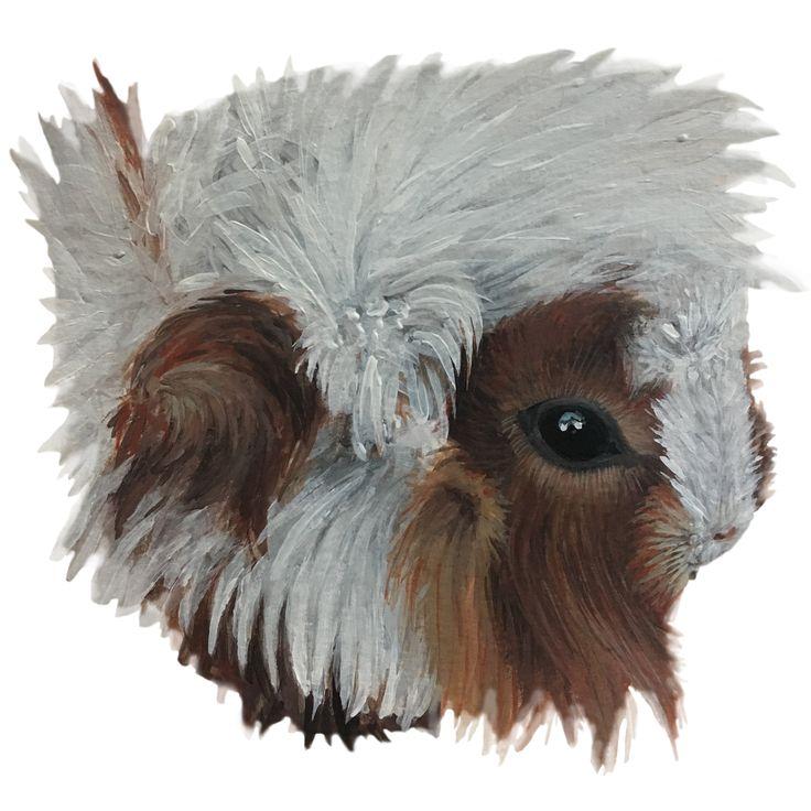 Guinea piggy, Acrylic on paper, Nikolina Ivanovic 2017