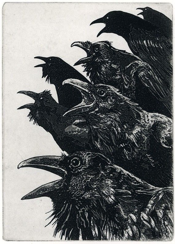 Raven artwork , Raven, crow, Etching in assorted ink 5 x 7 inch 2013