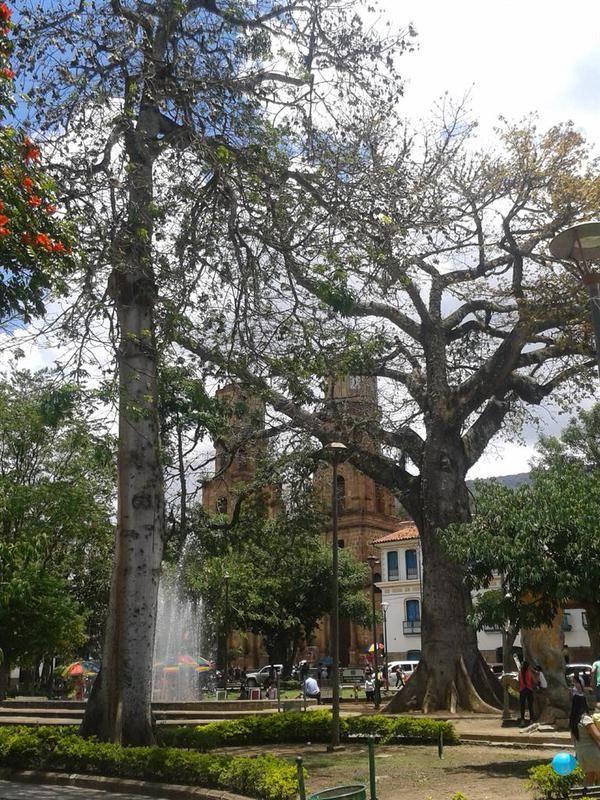 San Gil Santander Colombia Foro Alejo Portilla