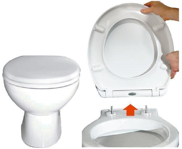 Excellent Toilet Seat Soft Close Quick Release Top Fix Easy Clean Inzonedesignstudio Interior Chair Design Inzonedesignstudiocom