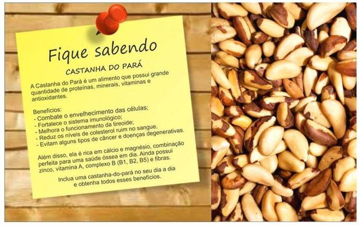 #Benefícios de #castanha do Pará. Saiba como fazer mais coisas em http://www.comofazer.org