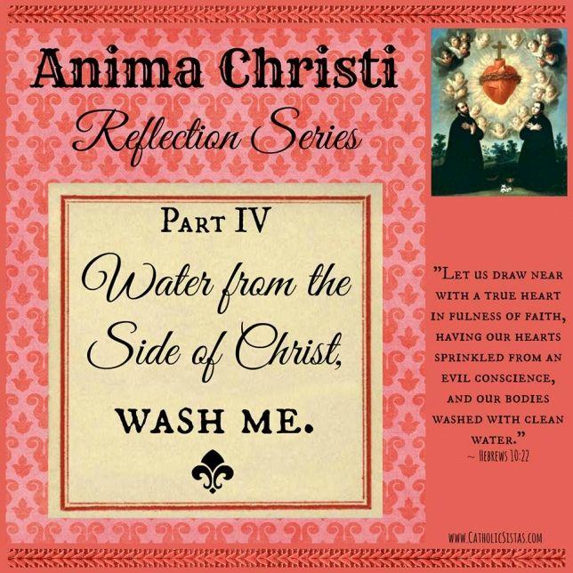 Anima Christi Reflection Series - part IV - Catholic Sistas