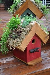 Bird House with garden on topRecycle Planters, Birds Gardens, Roof Birdhouses, Recycle Gardens, Green Roof, Gardens Planters, Birds House, Gardens House, Living Roof