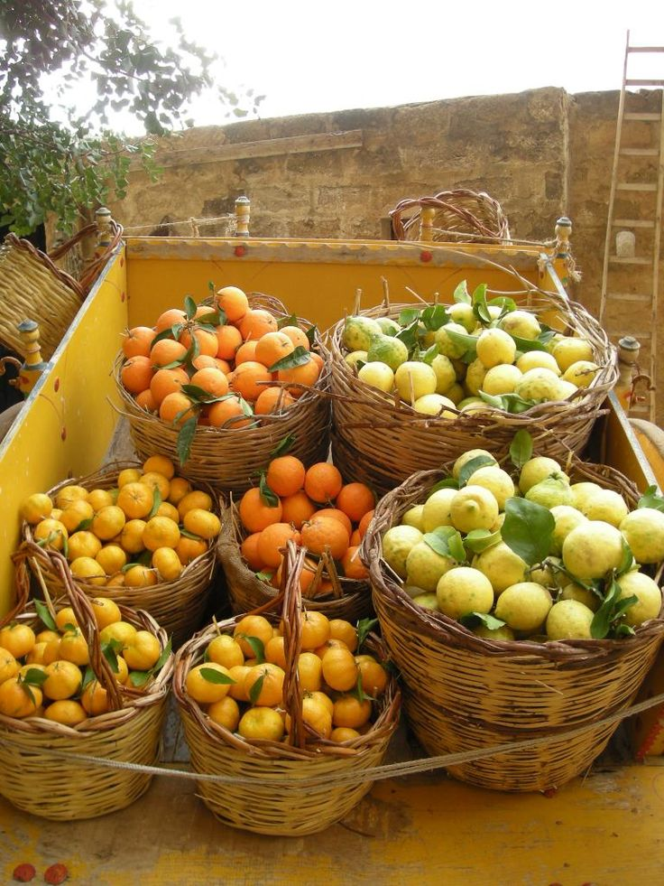#Sicily fruit ... orange, lemon, mandarine .... what else? www.bebtrapanigranveliero.it