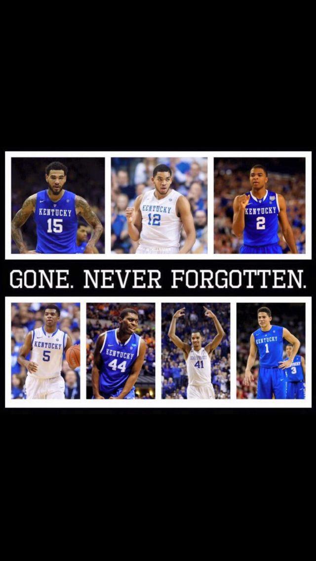 2014-2015 Perfect Season, 38-1 after NCAA tournament play. UK