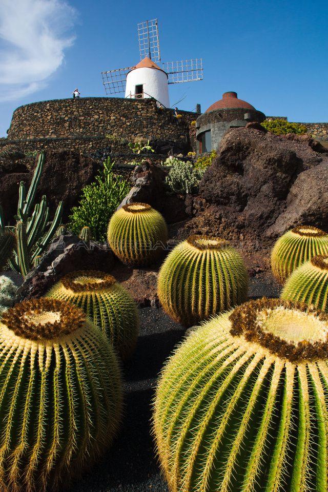 10848 best spain mi espa a i images on pinterest spain spanish and beautiful places - Jardin de cactus madrid ...