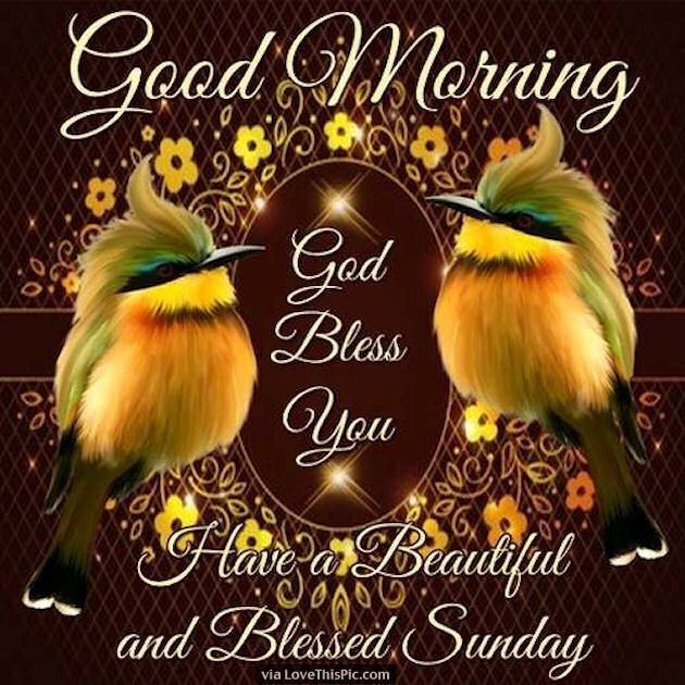 Sunday Morning Religious Quotes: Good Morning God Bless Have A Beautiful Sunday Good