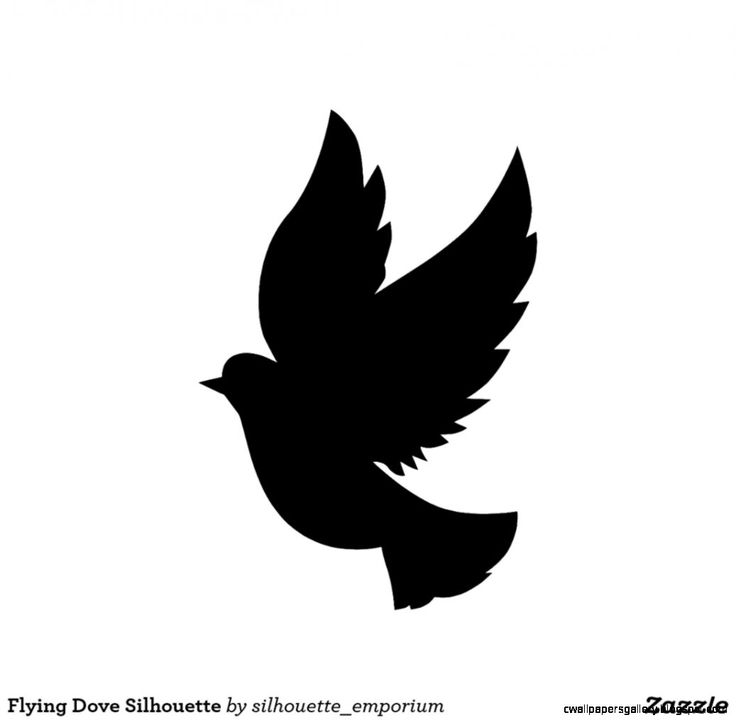 Single Flying Bird Silhouette Dove | Wallpapers Gallery ...