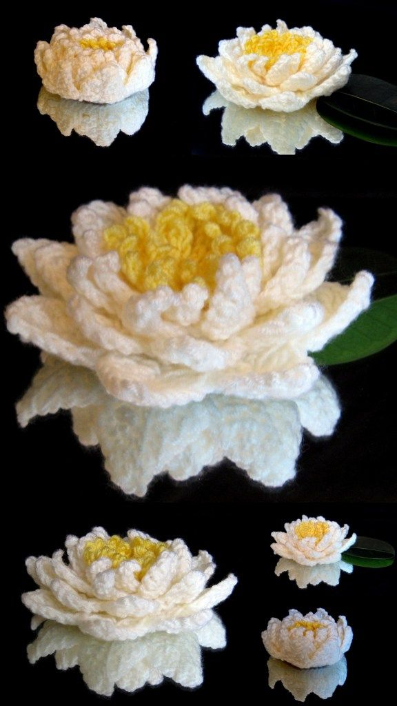 [Free Pattern] Most Beautiful Crochet Water Lily You've Ever Seen