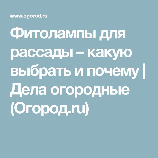 Фитолампы для рассады – какую выбрать и почему   Дела огородные (Огород.ru)