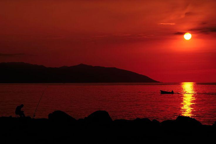 Volkan Donbaloğlu Resmi Sitesi | Kişisel web adresi