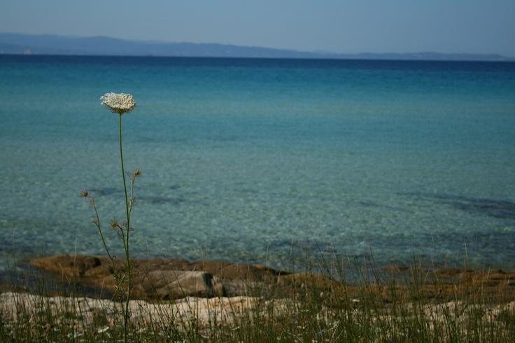 Kalidi beach, Vourvourou, Sithonia, Chalkidiki, Greece
