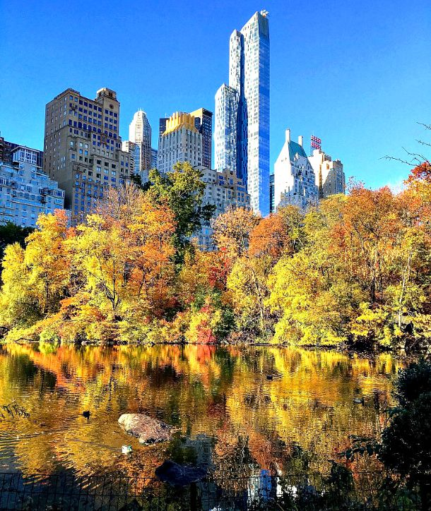 Tips for Central Park with Kids in Winter, Spring, Summer & Fall