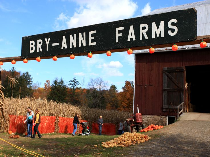 Bry-Anne Farms with PYO
