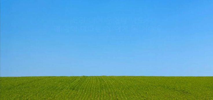 푸른 초원