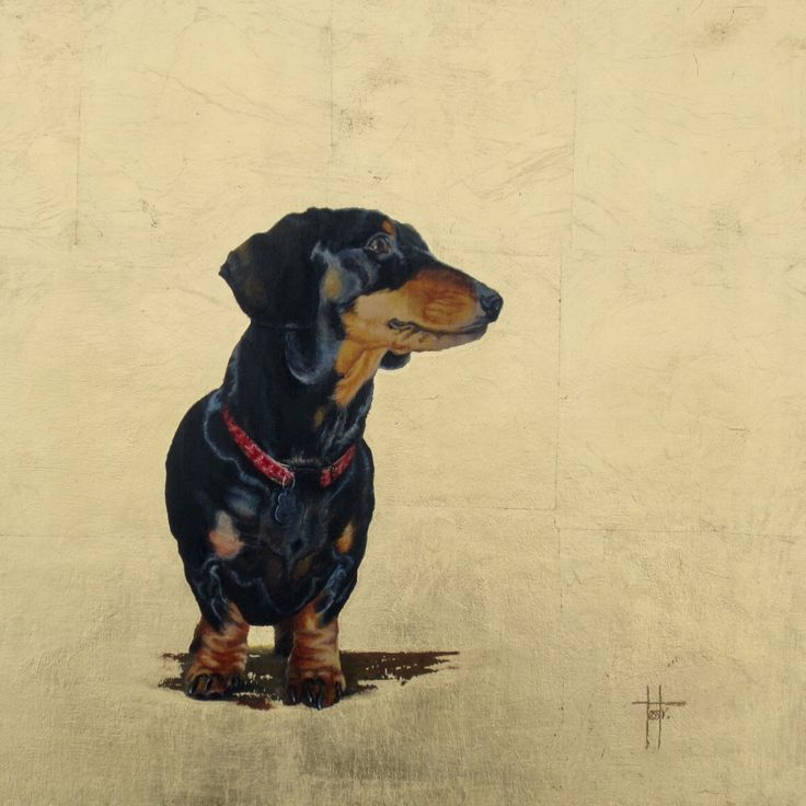 'Frank' pet portrait - Acrylic and gold leaf on wood panel