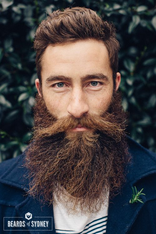 Beards of Sydney