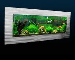 7 besten aquarium bilder auf pinterest